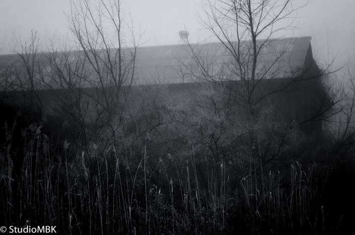 20110424-_DSC0087-Edit-2